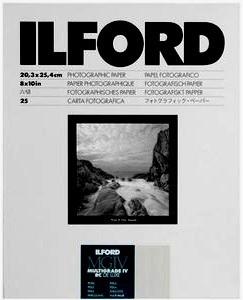 Ilford 8x10
